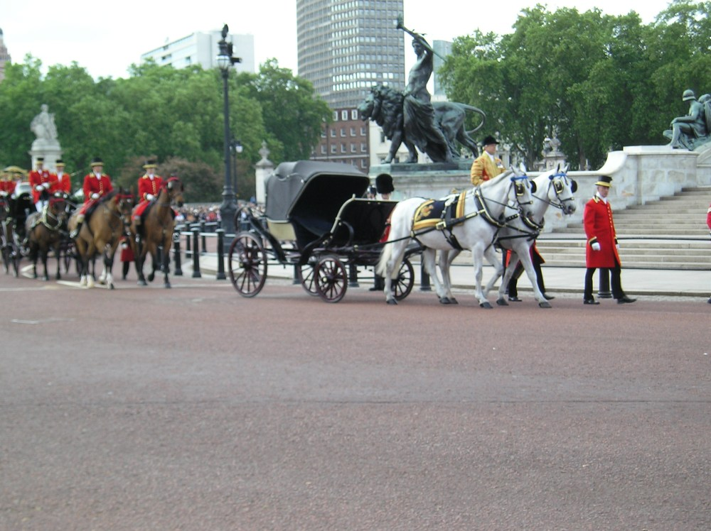 Trooping the Colour 2010 (5/6)
