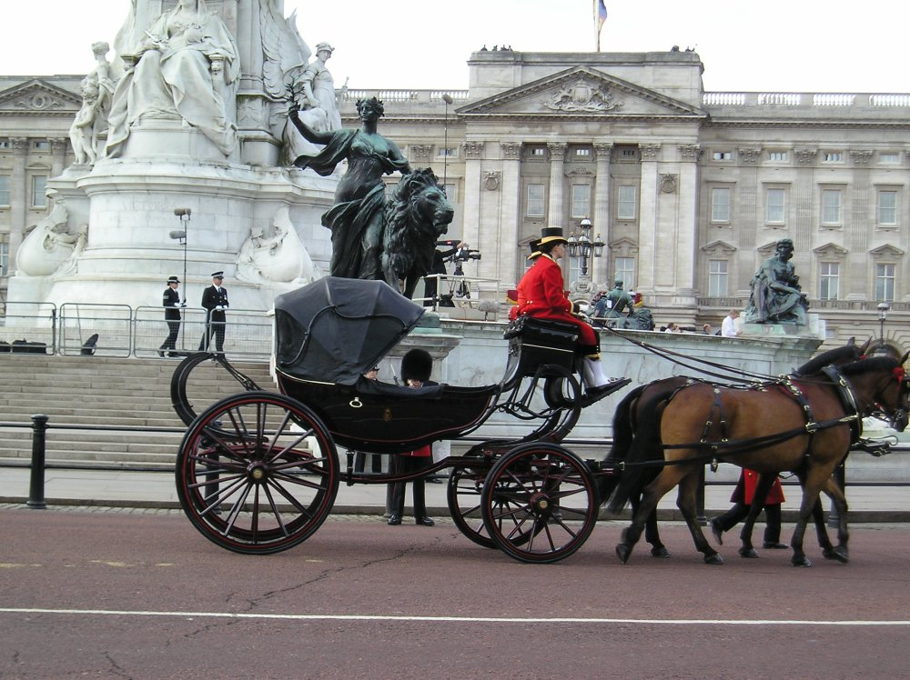 Trooping the Colour 2010 (4/6)