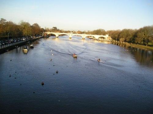 twickenham bridge & the river thames