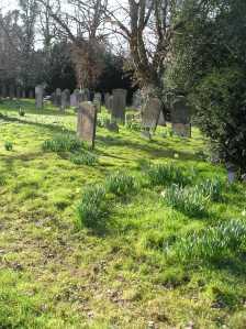 oak lane cemetery twickenham
