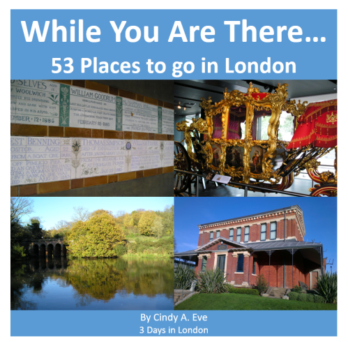 cover image sq - While You Are There