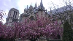IMAG3192 - 2016.04.24 Paris for lunch