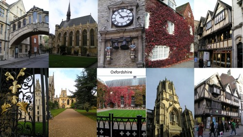 work and travel as a carer