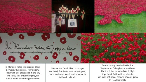 armistice day remembrance sunday in flanders fields