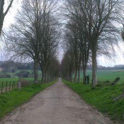 my camino; the journey so far