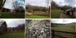 Titsey Estate Surrey