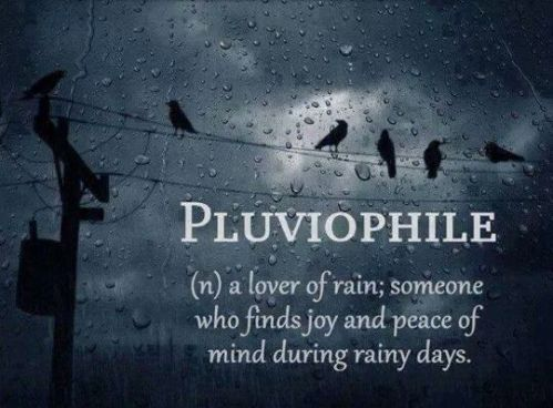pluviophile a lover of rain