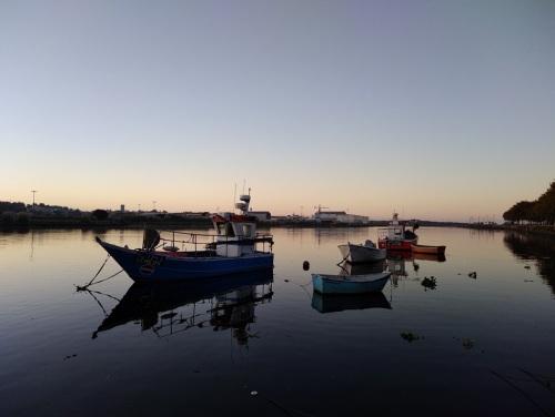 camino de santiago portuguese coastal route port to santiago