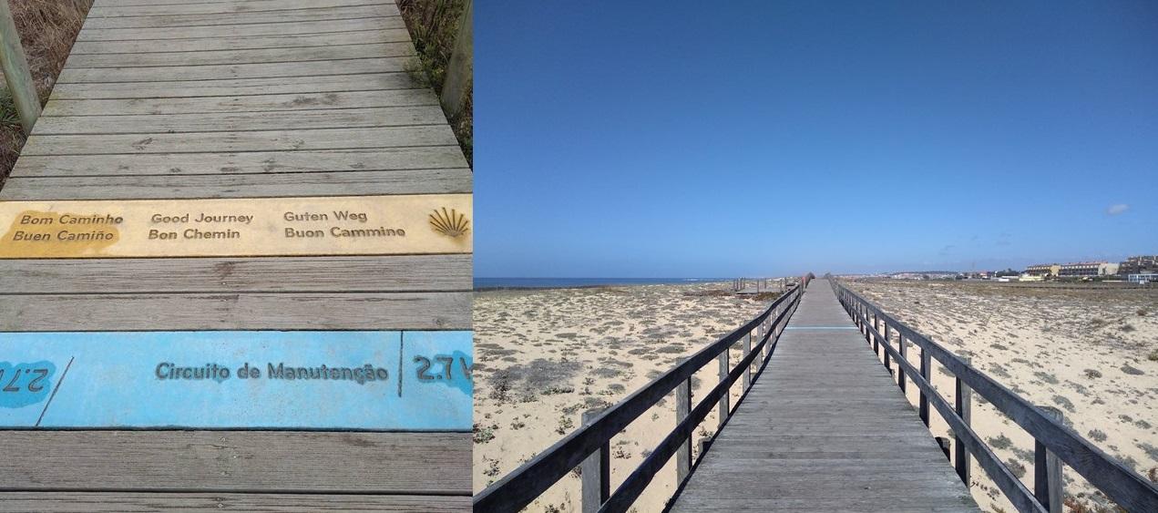 camino portuguese coastal route