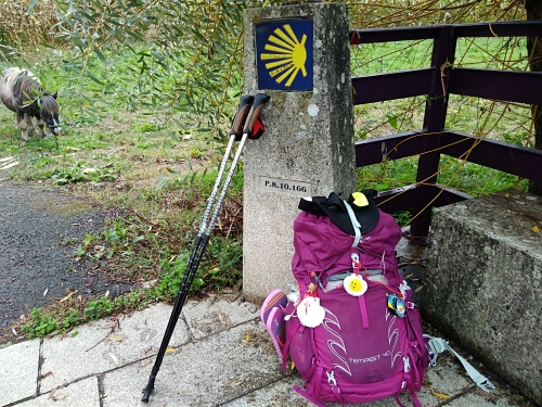 porto to santiago, padron to santiago, osprey tempest 40 mystic magenta, walking the camino, nordic walking poles.