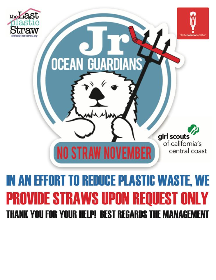 no straw november, ocean guardians, single use plastic
