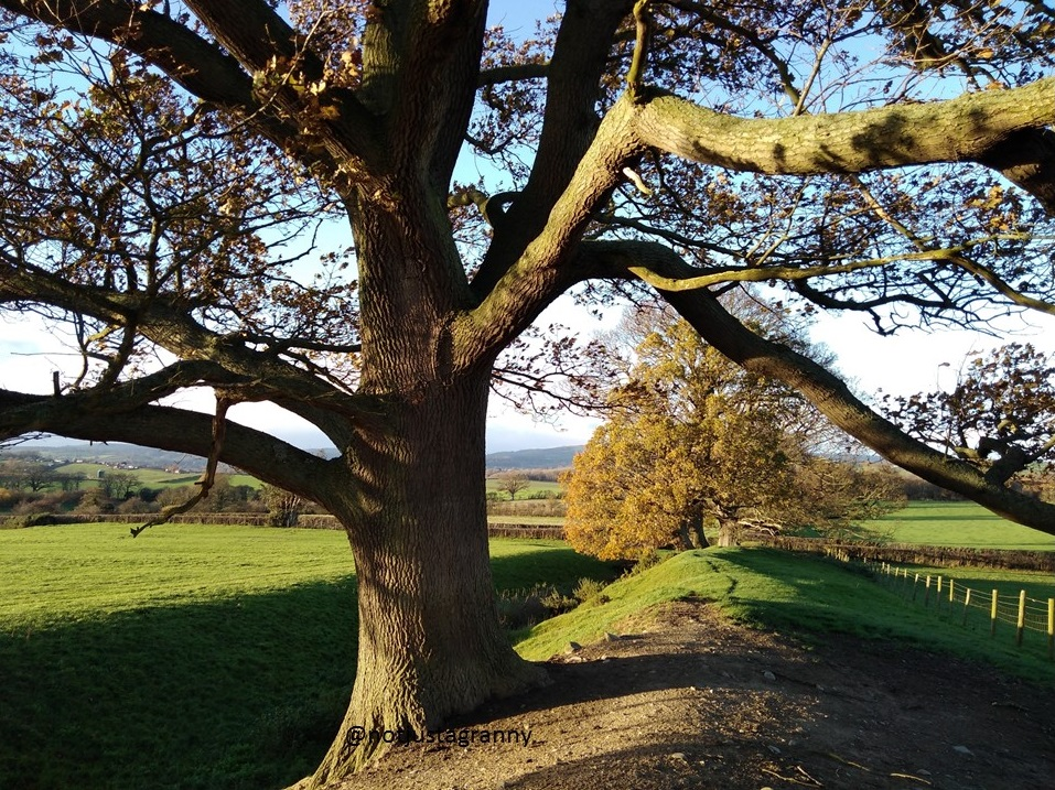 offas dyke, walk 1000 miles, walks in wales, montgomery castle wales, camino 2018 practise walks