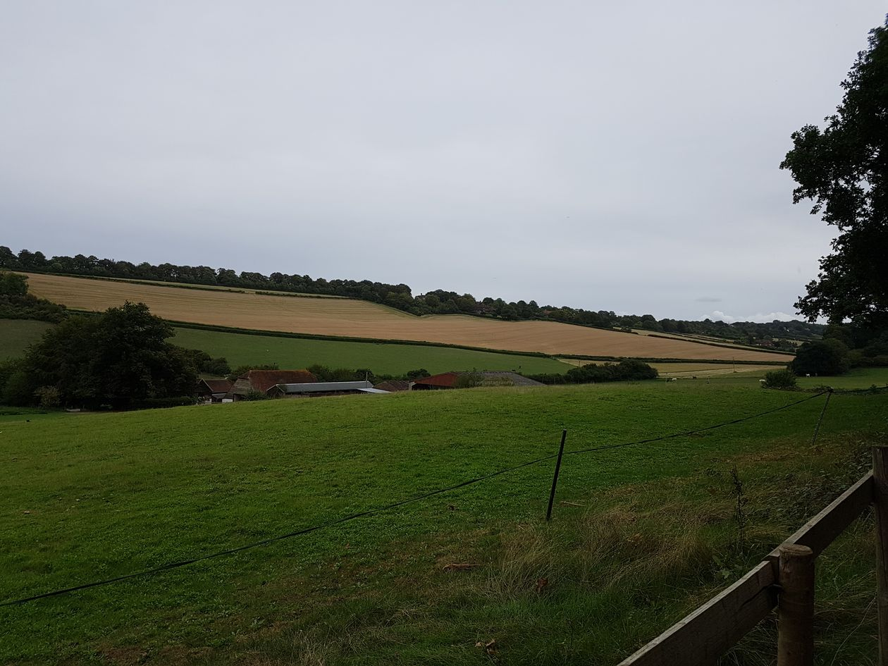 chantry wood, the north downs way, pilgrims way guildford, river wey, walking the pilgrims way, the pilgrims way winchester to canterbury, long distance walks england, women walking solo
