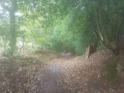 walking the pilgrims way, the pilgrims way winchester to canterbury, long distance walks england, women walking solo