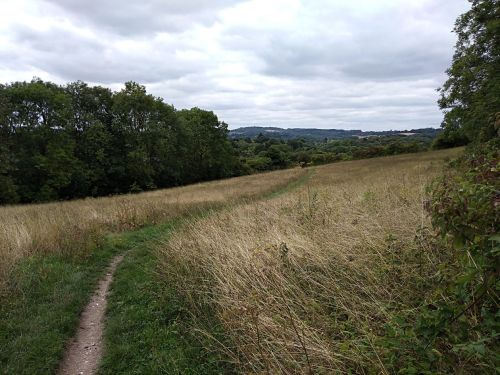 walking the pilgrims way, the pilgrims way winchester to canterbury, long distance walks england, women walking solo, merstham to oxted, the north downs way