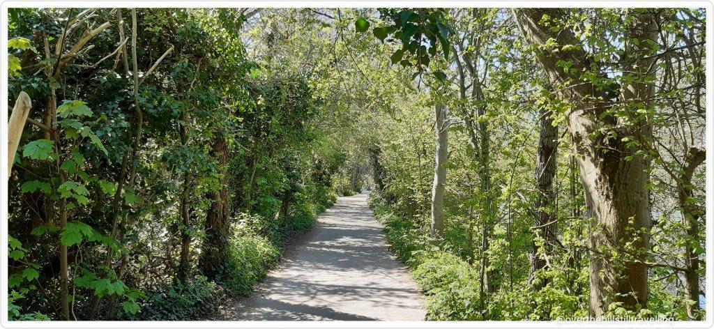 walking the thames path